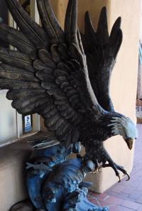 A1 eagle